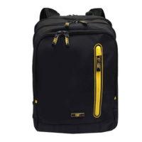 کوله پشتی لپ تاپ مدل CAT-110